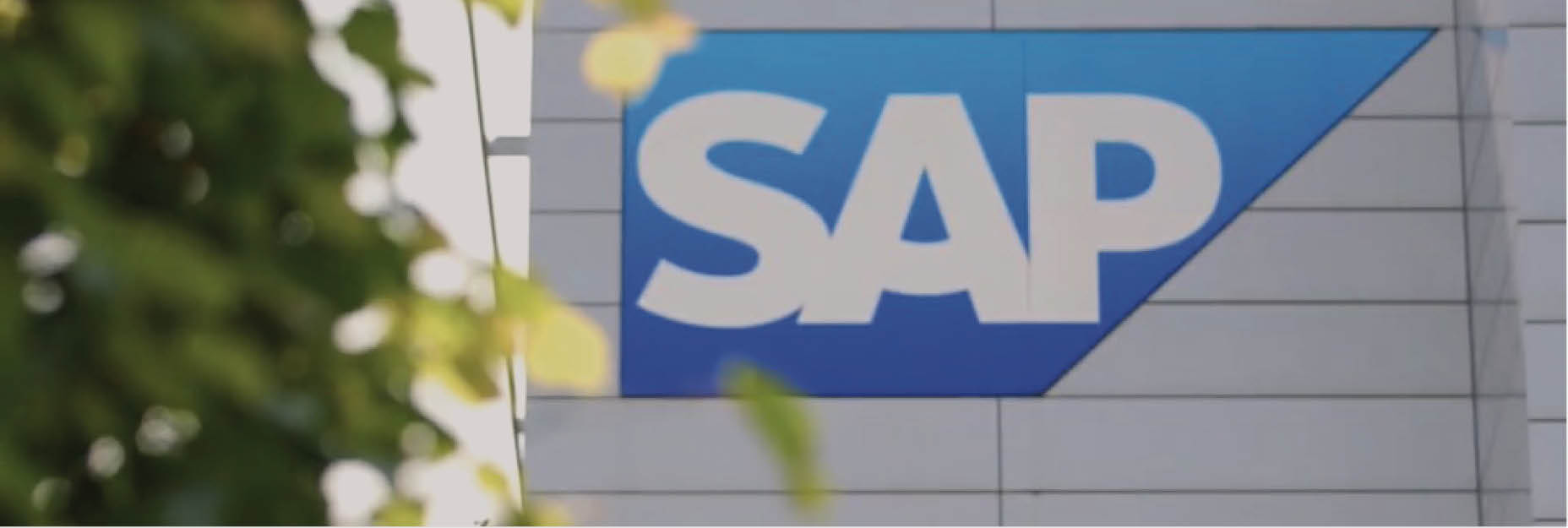 Blog - SAP case study video-1