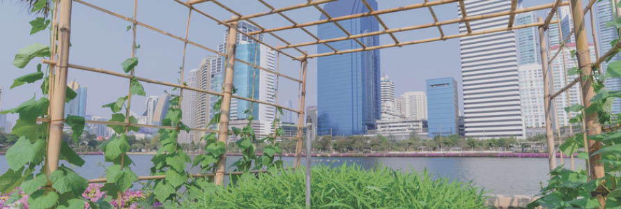 26.Urban Farming.jpg