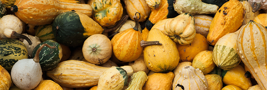 Food waste: The spookiest part of Halloween